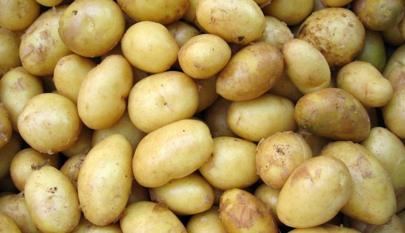 Lav traditionel mad med omtanke